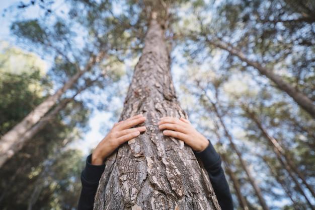 Personne non reconnaissable étreignant l'arbre