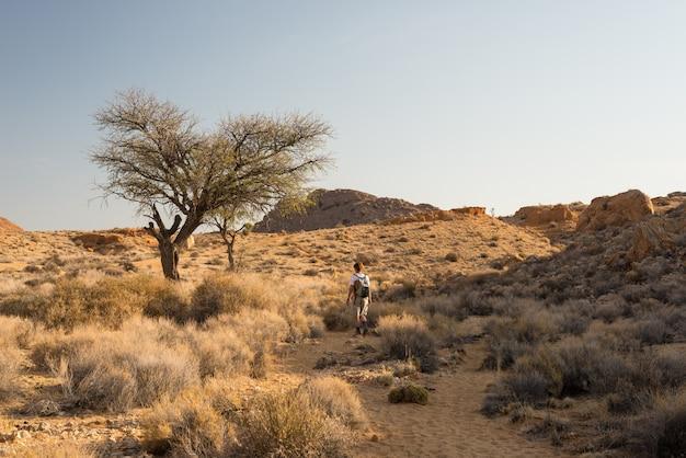 Une personne en randonnée dans le désert du namib