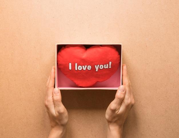 Personne, tenue, présent, boîte, doux, symbole, coeur