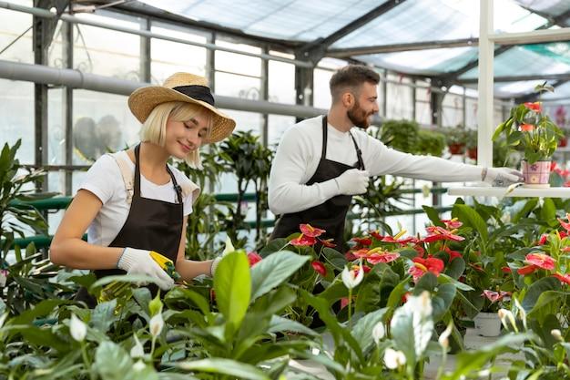Personnes prenant soin des plantes coup moyen