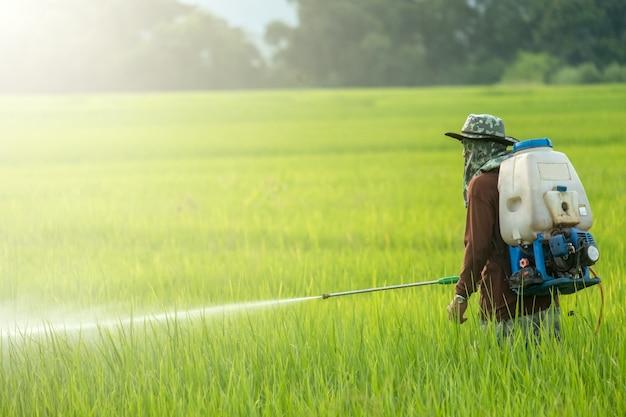 Personnes pulvérisant des pesticides dans une ferme avec espace de copie.