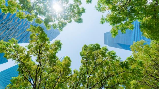 Perspective modèle extérieur mur de verre bleu bâtiments modernes avec des feuilles d'arbres verts