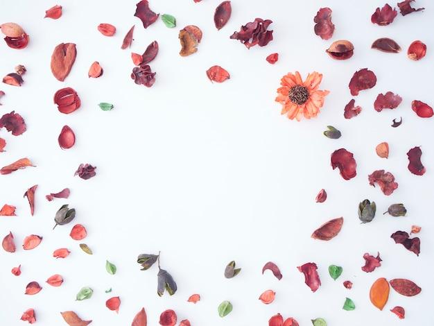 Pétale coloré de fond de pot-pourri de fleurs séchées.