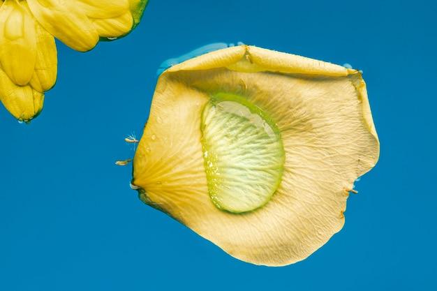 Pétale jaune en gros plan de l'eau bleue