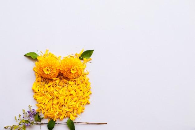 Pétale de souci fleurs jaunes arrangement hibou oiseau