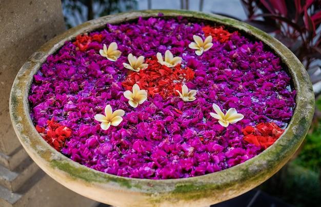 Pétales de fleurs dans un bol
