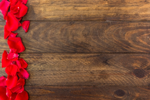 Pétales de fleurs fraîches rouges