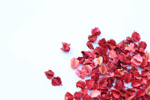 Pétales de fleurs séchées isolés sur fond blanc