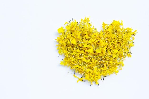 Pétales de fleurs de souci sur blanc. forme de coeur