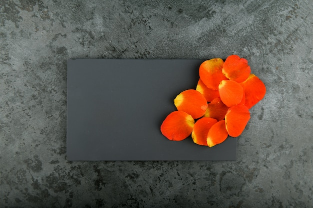 Pétales orange sur fond noir. place pour une inscription. pétales de fleurs sur marbre.
