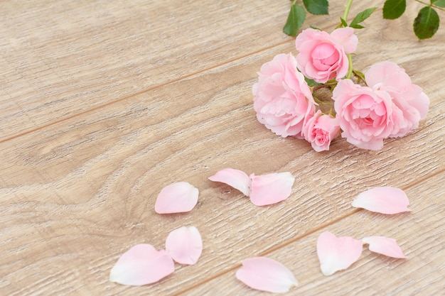 Pétales de rose et belles roses sur le fond en bois. concept de donner un cadeau en vacances. vue de dessus.