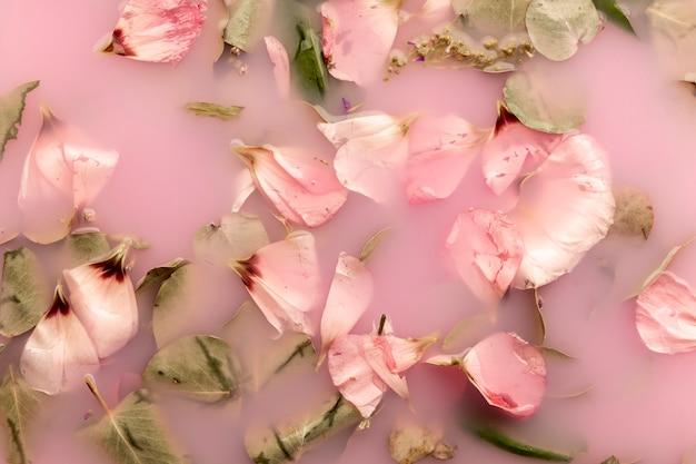 Pétales roses dans de l'eau de couleur rose