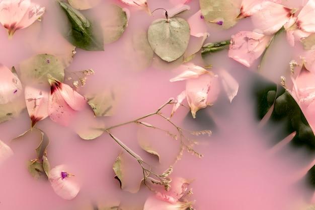 Pétales roses et feuilles dans de l'eau colorée rose