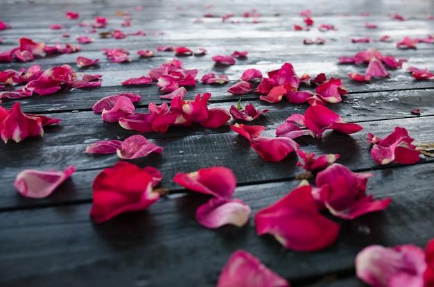 Pétales de roses rouges sur un sol texturé en bois foncé