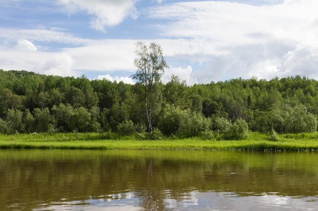 Un petit affluent du grand fleuve sibérien. région de krasnoïarsk, russie