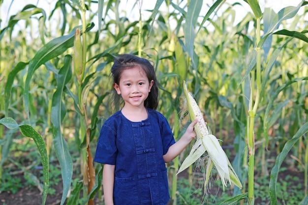 Petit agriculteur récolte du maïs frais dans une plantation agricole.
