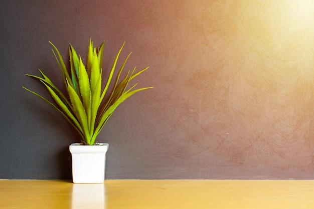 Petit arbre dans le pot de fleurs