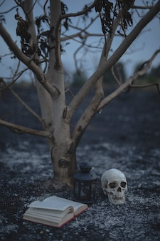 Petit arbre avec livre de sorts et crâne pour la nuit d'halloween
