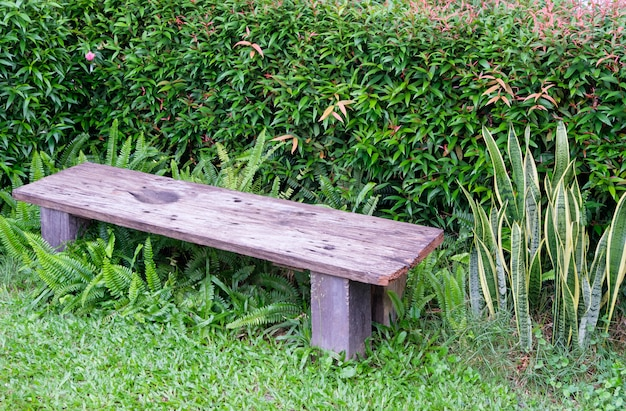 Petit banc en bois près des arbustes pour se reposer dans le jardin arrière.