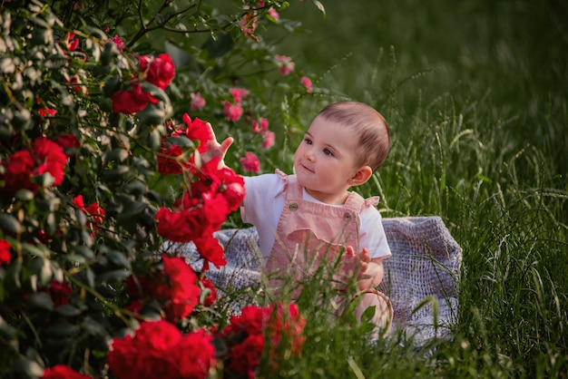 Un petit bébé est assis sur une pelouse verte à côté de roses rouges. une fille heureuse dans une salopette poudrée bénéficie d'une promenade dans le parc. closeup portrait d'un enfant. une enfance insouciante