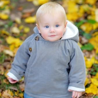 Petit bébé garçon dans le parc en automne