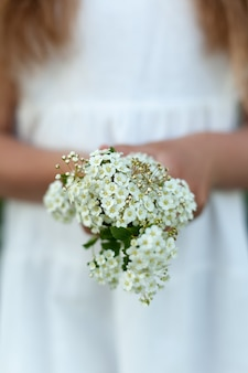 Petit bouquet de fleurs blanches entre les mains d'une femme