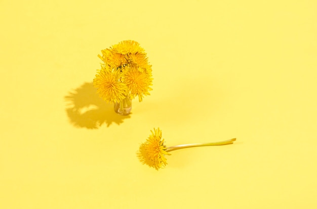 Petit bouquet de pissenlits dans un vase avec des ombres dures sur fond jaune. concept de saisonnalité, printemps. mise à plat, espace de copie, place pour le texte.