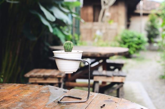 Petit cactus en pot de fleur blanc pour la décoration de table
