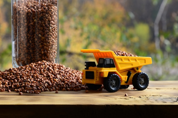 Un petit camion-jouet jaune est chargé de grains de sarrasin bruns