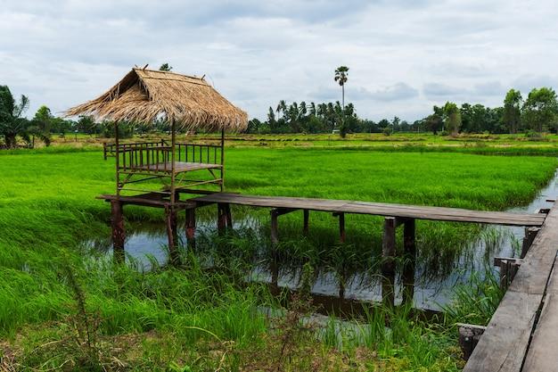 Petit chalet en bambou dans une rizière