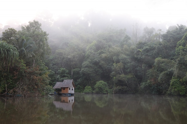 Petit chalet sur le lac dans la forêt avec la brume matinale dans le fond de la nature