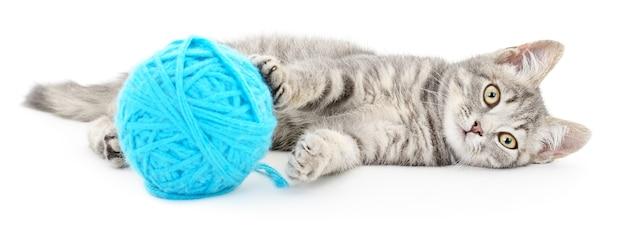 Petit chaton drôle et point d'écoute de fil. isolé sur blanc