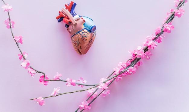 Petit coeur humain en plastique avec des fleurs sur la table