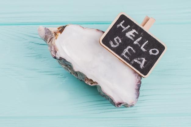 Petit coquillage avec tableau sur bureau bleu. bonjour mer écrit au tableau.