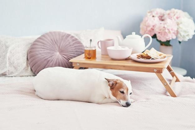 Petit déjeuner au lit dans la chambre d'hôtel. hébergement. petit déjeuner au lit avec une tasse de thé avec des crêpes sur un plateau sur le lit