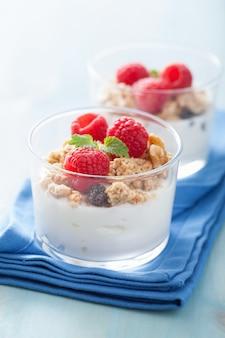 Petit-déjeuner sain avec du granola au yogourt et de la framboise