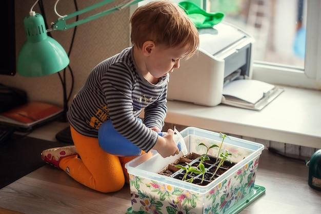 Petit garçon de 2 ans arrosant les semis d'un flacon pulvérisateur alors qu'il était assis sur une table