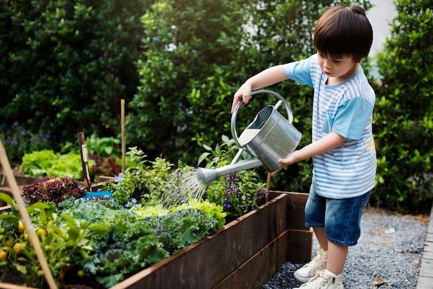 Petit garçon arrosant les plantes