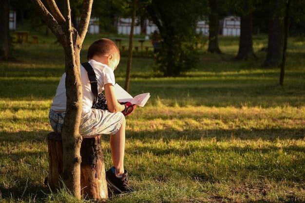 Petit garçon assis le dos sur une souche d'arbre dans le parc et lisant un livre