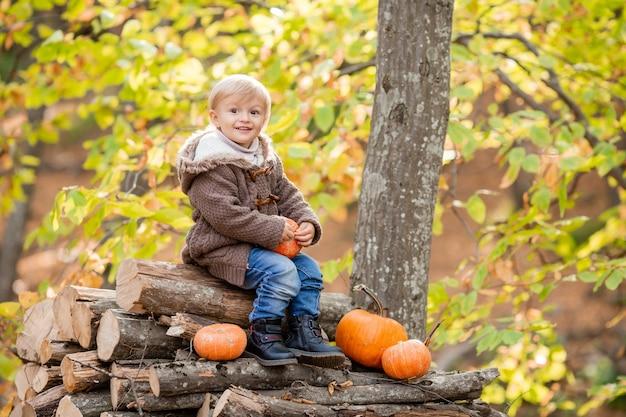 Petit garçon blond en vêtements d'automne sourit assis dans la forêt sur des bûches avec des citrouilles