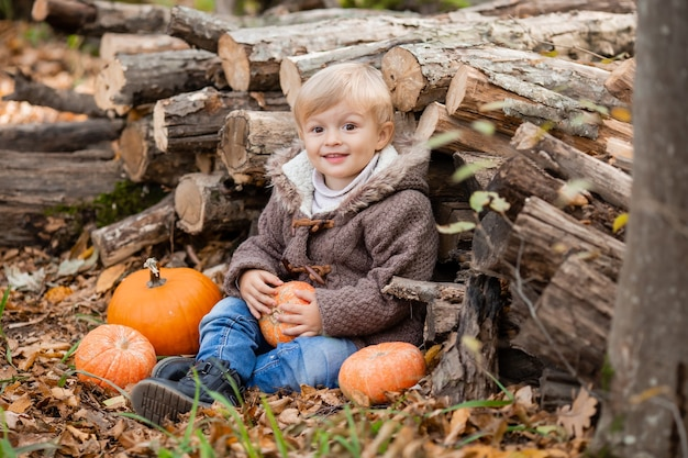 Un petit garçon blond en vêtements d'automne sourit assis dans la forêt sur des rondins avec des citrouilles