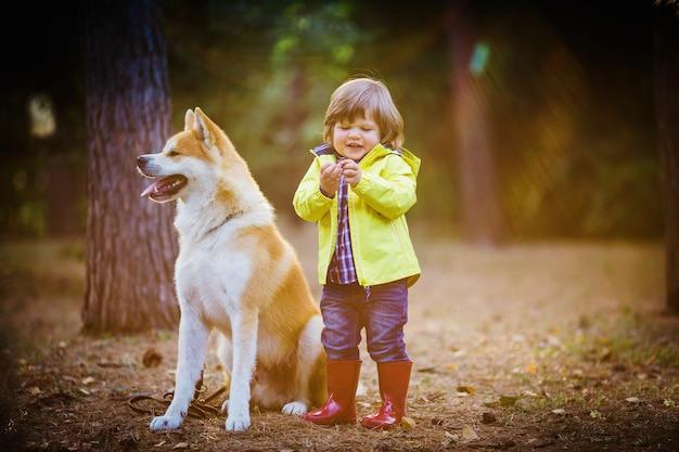 Un petit garçon en bottes de caoutchouc rouge avec un chien rouge akita inu dans un parc en automne