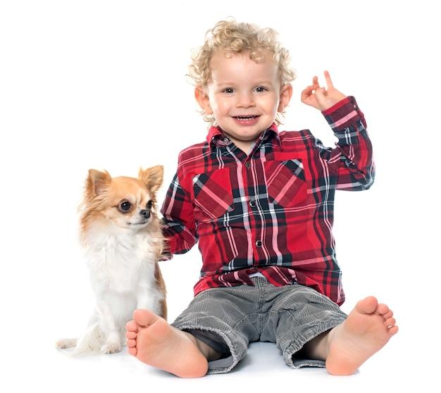 Petit garçon et chihuahua