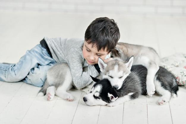 Petit garçon et chiots husky dormant