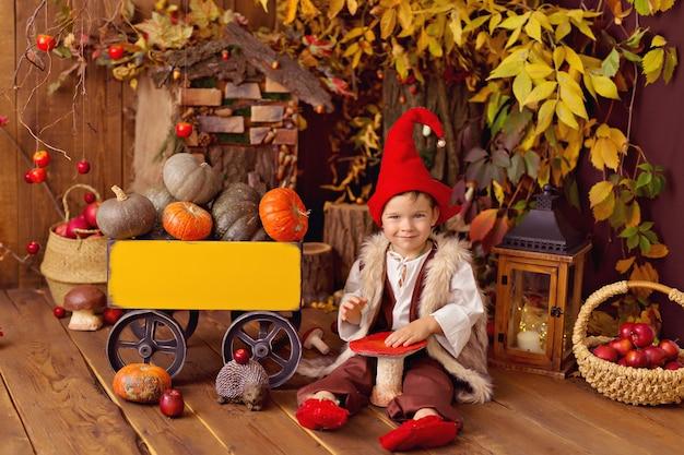Petit garçon en costume de gnome pour halloween