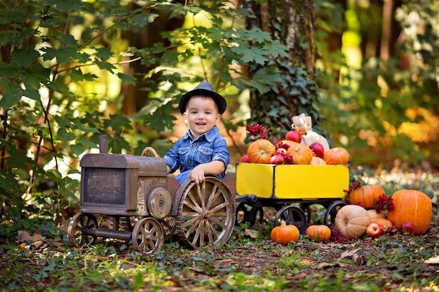Petit garçon dans un tracteur avec un chariot avec des citrouilles