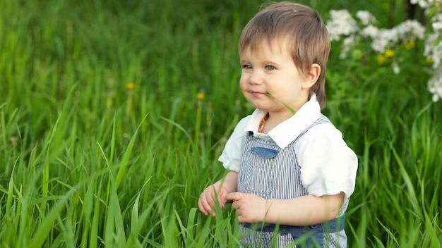 Petit garçon drôle aux yeux bleus brillants en salopette mangeant de l'herbe verte fraîche dans un grand jardin fleuri