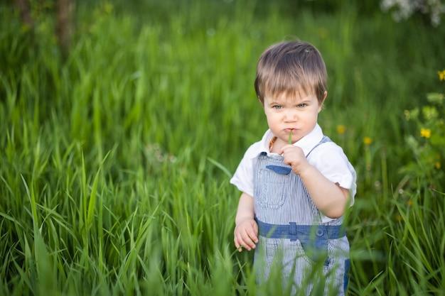 Petit garçon drôle dans une salopette bleue à la mode avec des yeux bleus expressifs. sourires mignons et mange de l'herbe verte fraîche dans un grand jardin fleuri dans les hautes herbes.