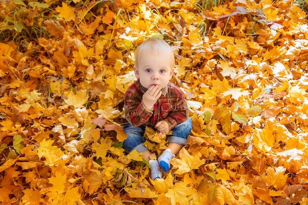 Petit garçon enfant dans le parc sur les feuilles de l'automne. mise au point sélective.