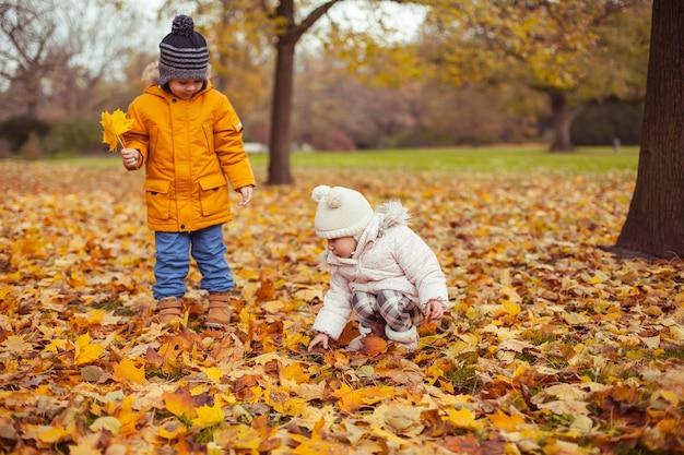 Petit garçon et fille marchent dans le parc d'automne. les petits enfants jouent. hiver chaud. automne lumineux. confortable.